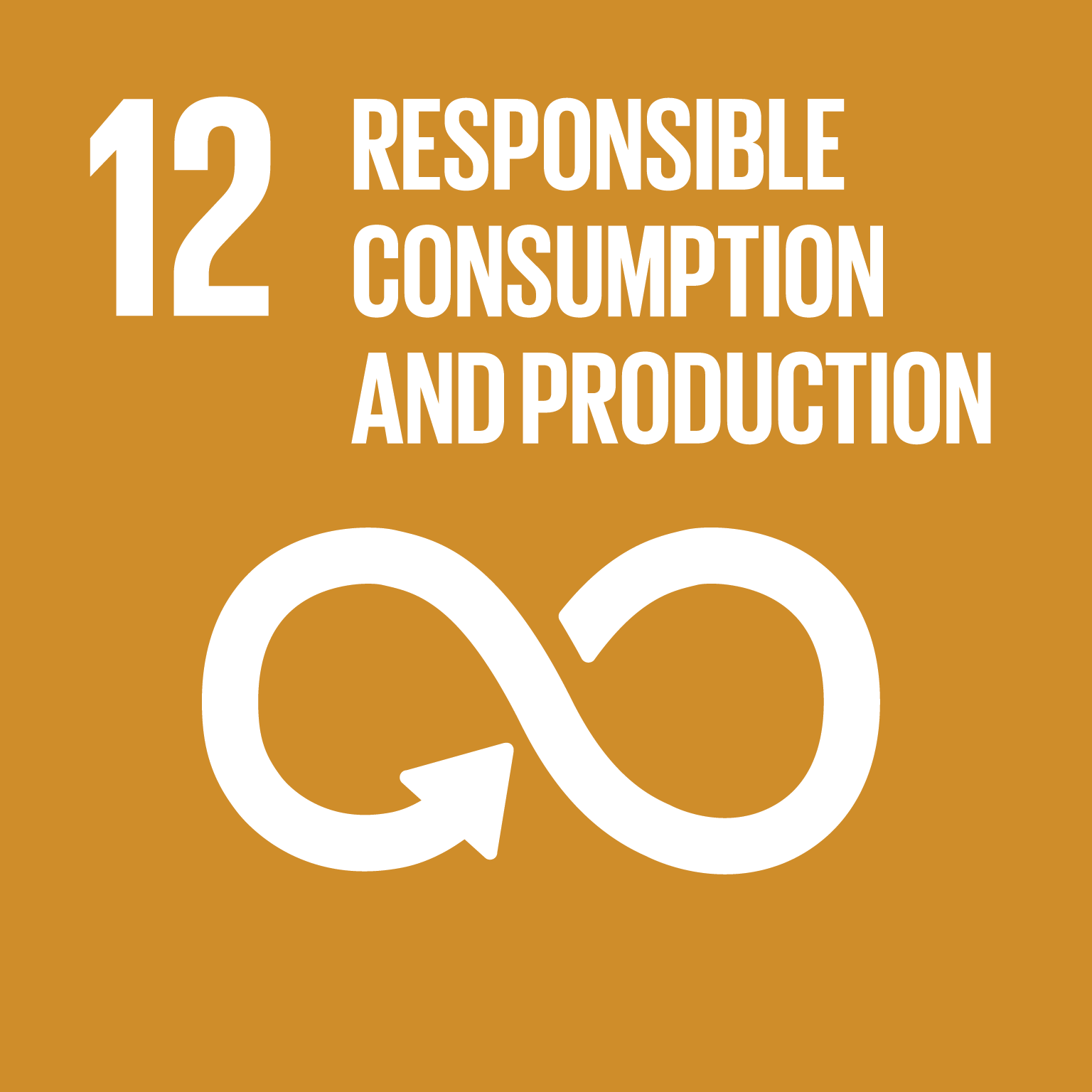 Responsible Consumption and Production (12)
