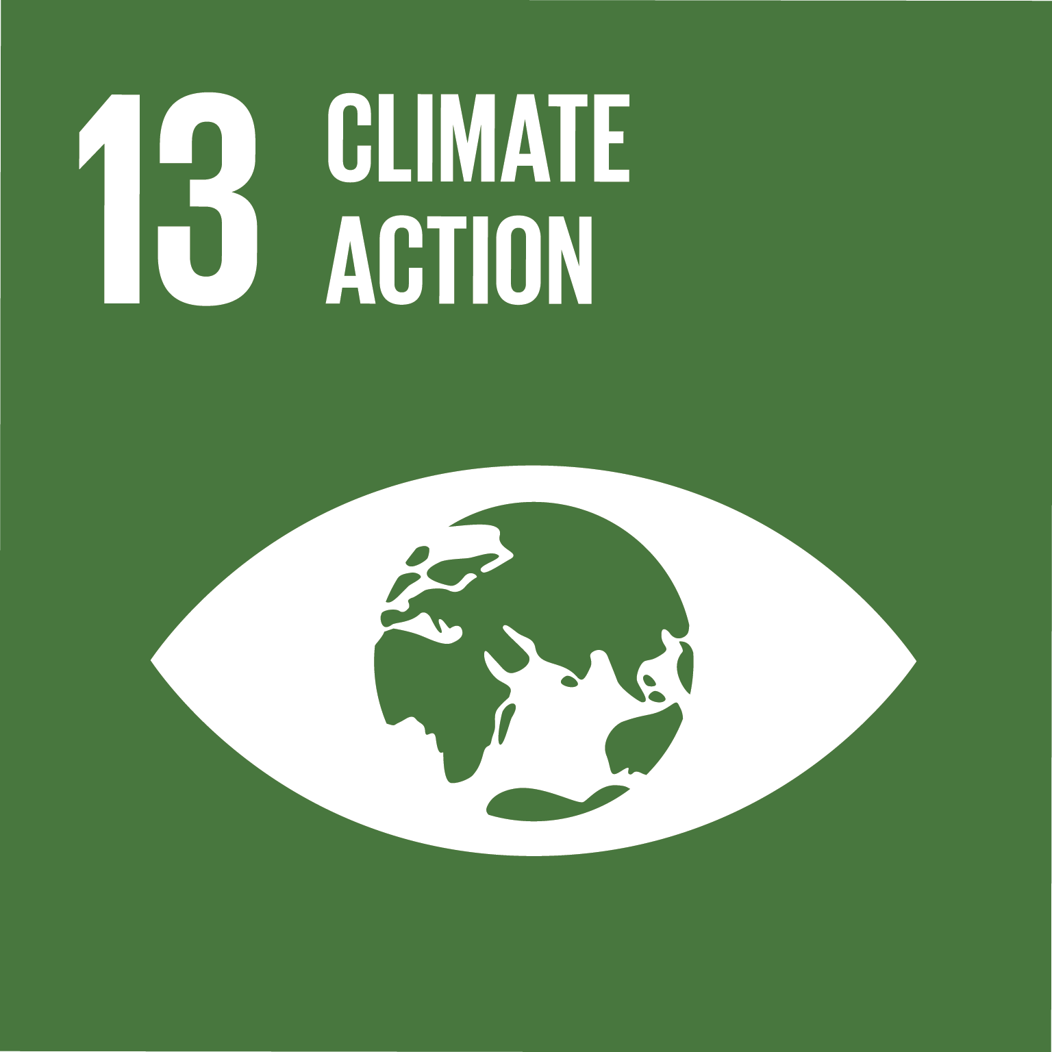 Climate Action (13)