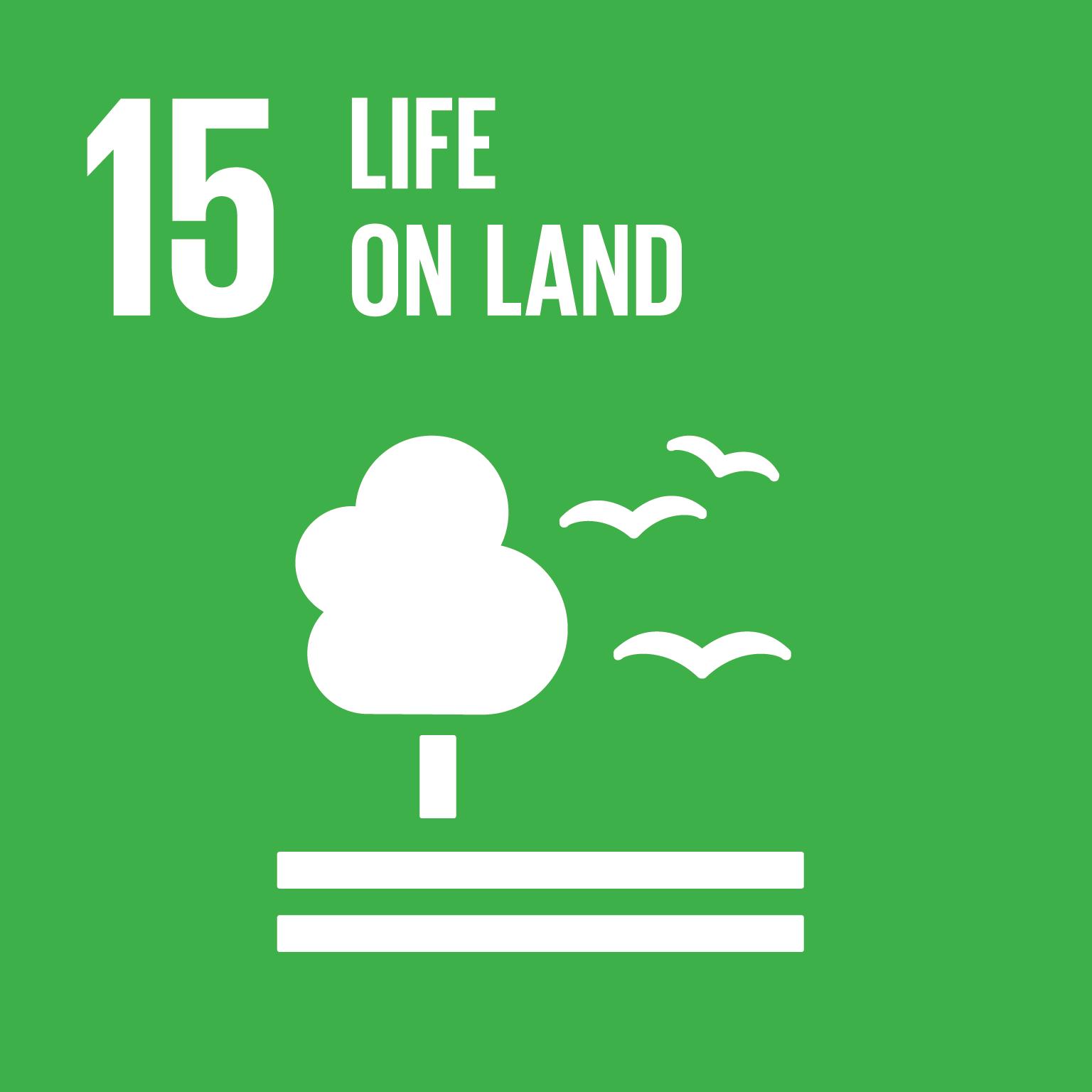 Life on land (15)