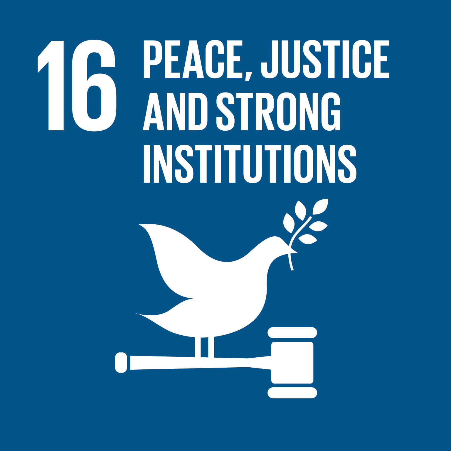 Peace, justice and strong institutions (16)