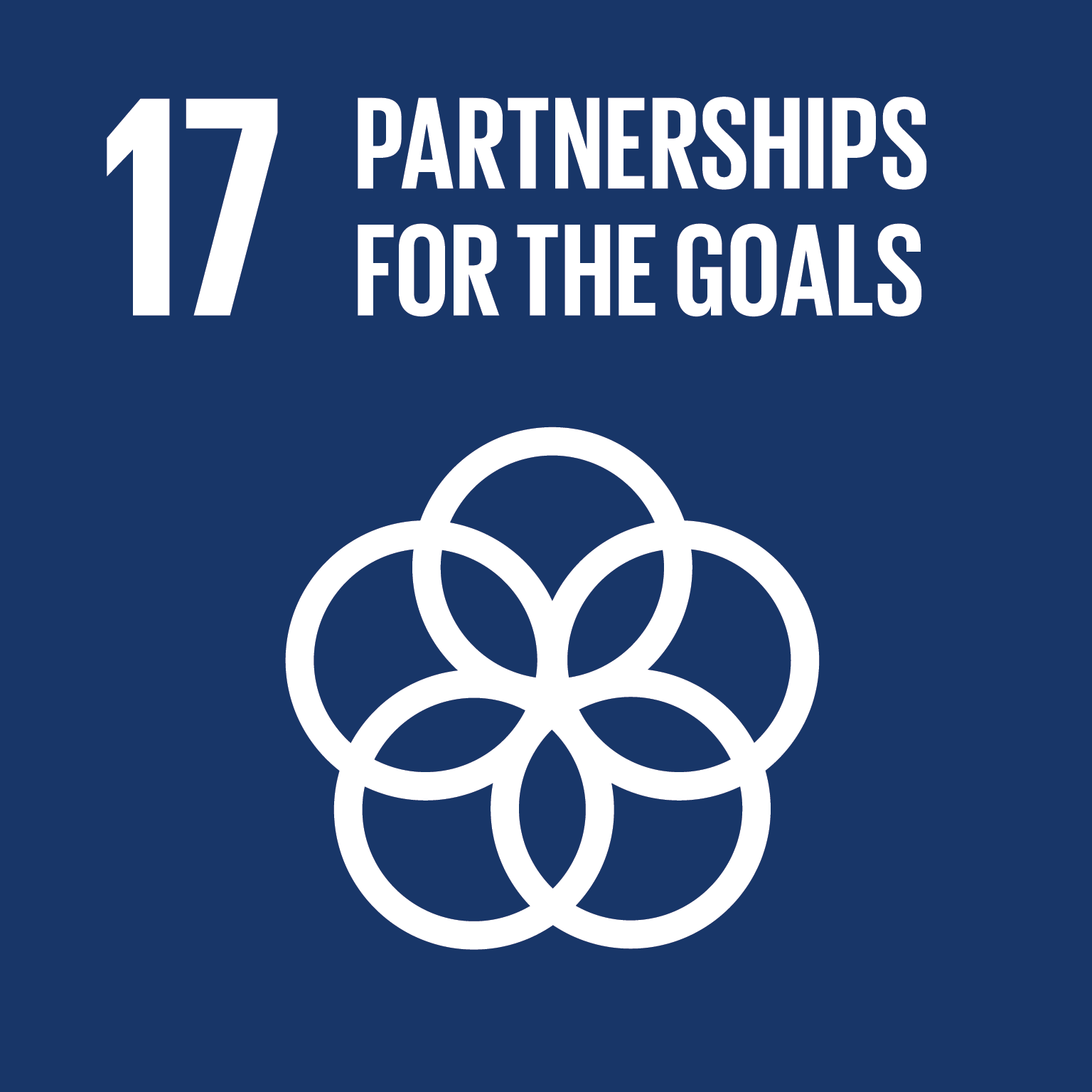 Partnerships for the goals (17)